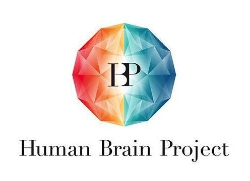Slidecast: Capire il cervello attraverso la simulazione, by Richard Walker, Human Brain Project