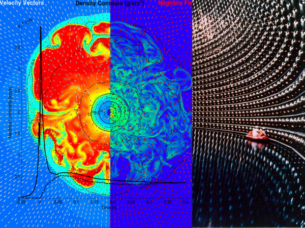A collage of a three-dimensional supernova simulation (centre left) and the Kamiokande neutrino detector (right). The simulation shows a cross-section from inside the collapsing star. The inner blue sphere corresponds to the neutron star formed. On the left in blue, cold, collapsing outer layers; in red, hot layers between the neutron star and the shockwave. The centre displays the structure of the magnetic fields entangled by turbulences. The black curve represents the expected neutron emission, which was detected for SN1987A in the Kamiokande neutrino detector for the first time. (Source: M. Liebendörfer)